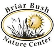 briar bush.jpg