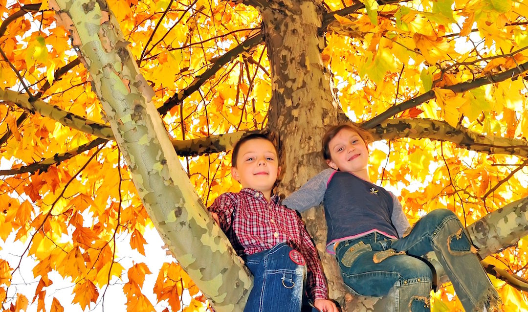 10 Destinations For Fall Family Fun