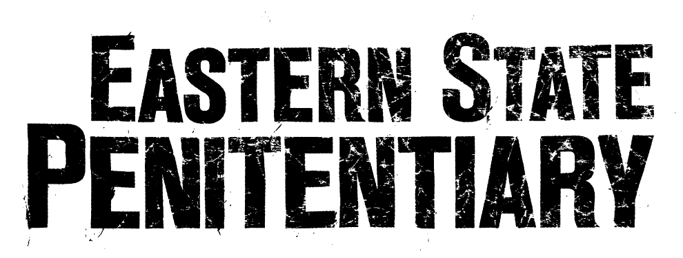 UMLY CAMP Ad